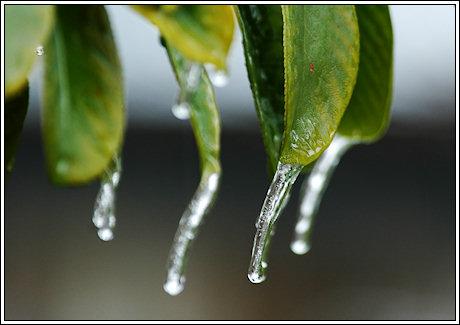 2009-007-ice-01