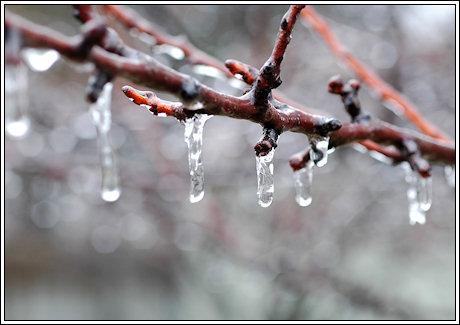 2009-011-ice-05