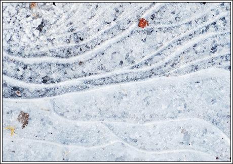 2009-031-icestorm-2b